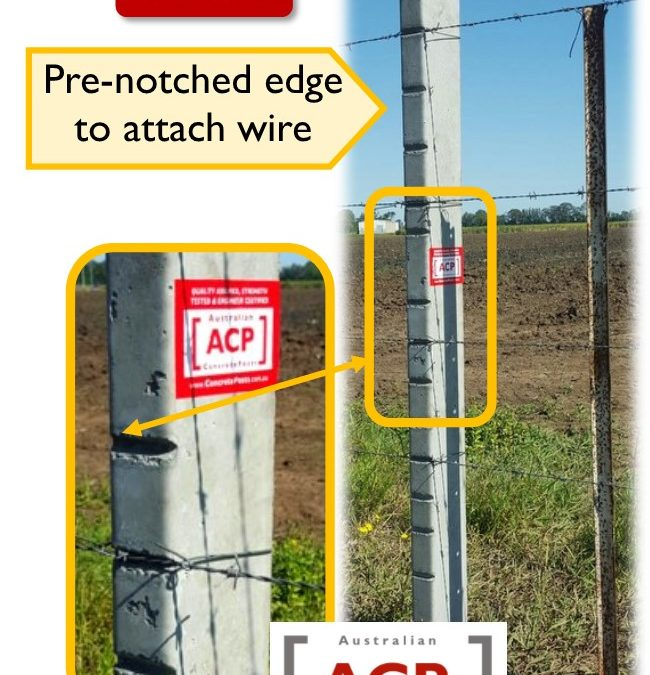 FP21 – 1.9m (6.4ft) Notched Concrete Fence Post