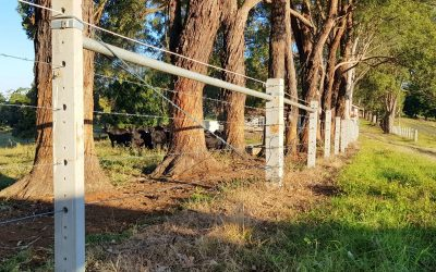 Cost of Fencing Too High? Consider it an Investment!