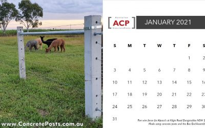 2021 Calendar download featuring concrete fence posts and strainers